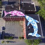 street-art-tom-bob (8)