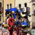 giostra-del-saracino (5)